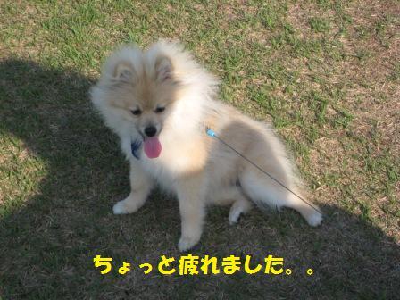 20140510_11.jpg
