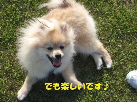 20140510_12.jpg