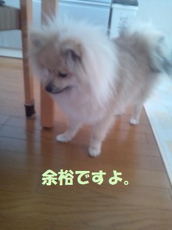 20140614_6.jpg
