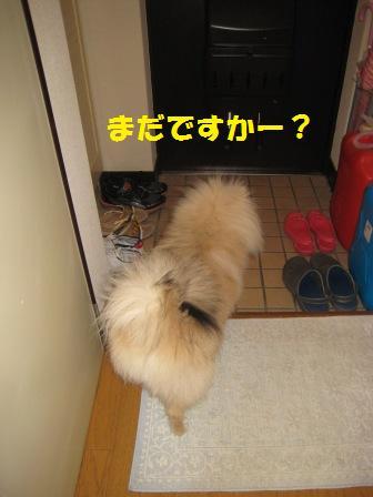 20140624_13.jpg