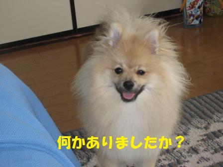20140624_7.jpg