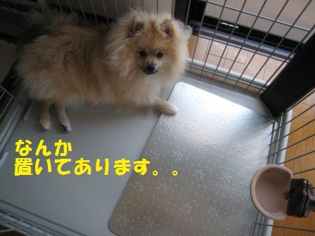 20140722_2.jpg