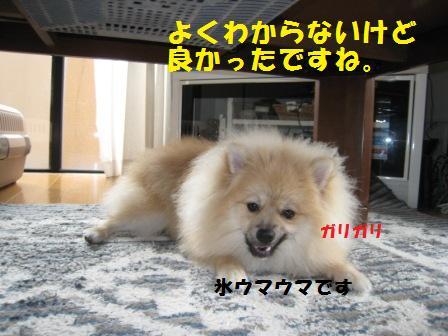 20140808_2.jpg