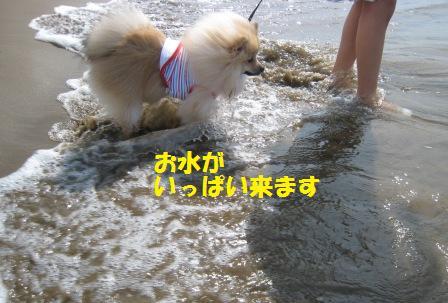 20140831_12.jpg