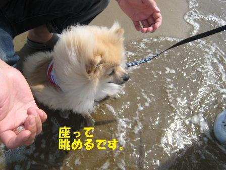 20140831_18.jpg