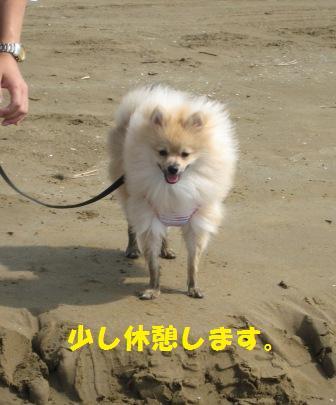 20140831_19.jpg