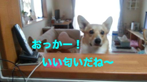 1_20140226104716d3a.jpg