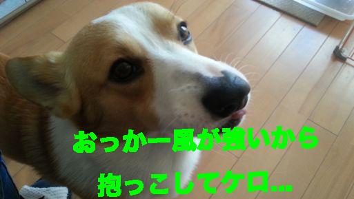 1_20140308181042e65.jpg