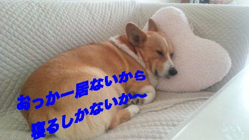 1_201403212353304cf.jpg
