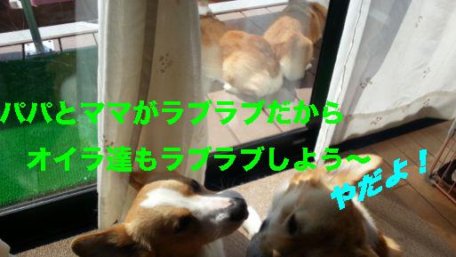 1_2014033012593420a.jpg