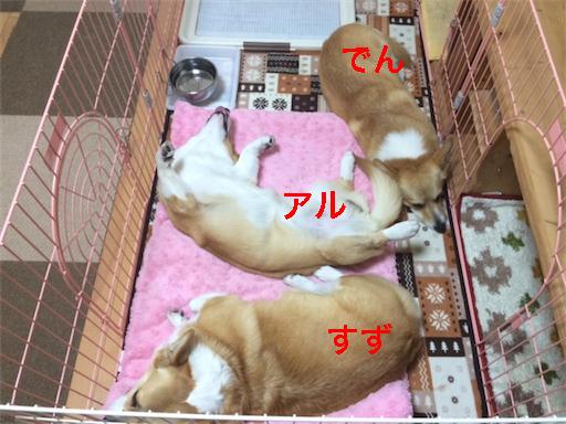 1_20140520220745a0c.jpg