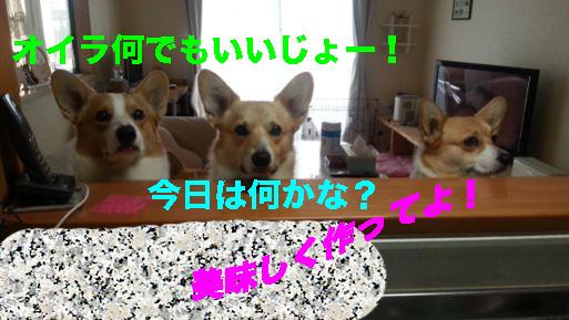 2_2014022610471873e.jpg