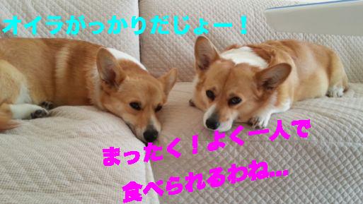 2_20140228134103908.jpg