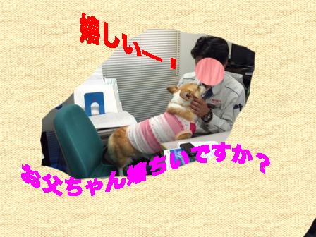2_20140402170830d92.jpg