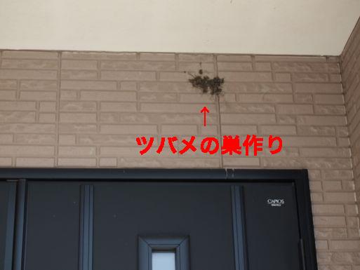 2_20140504122016664.jpg