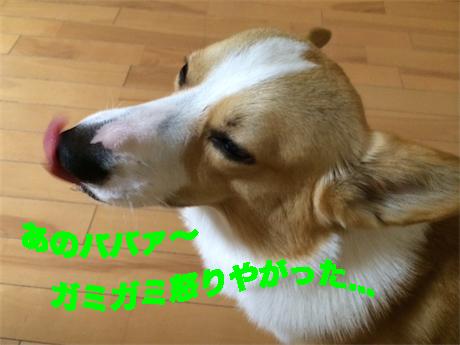 2_2014071608570650f.jpg