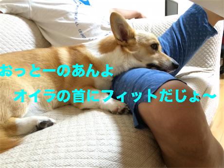 2_20140722125041086.jpg