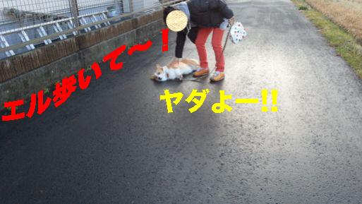 3_20140220141559162.jpg