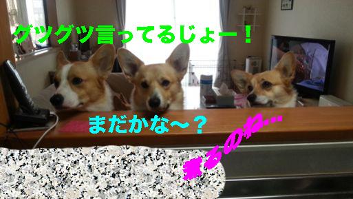 3_201402261047192a5.jpg
