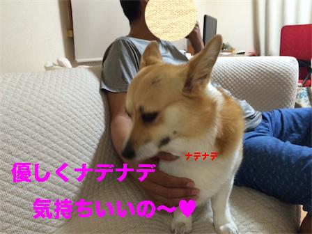 3_20140624223211c55.jpg