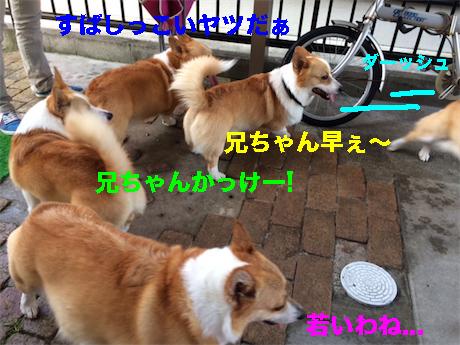 3_20140730094127713.jpg