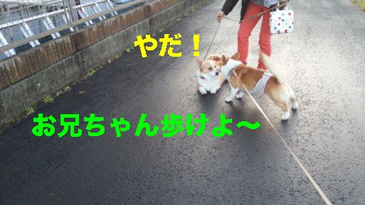 4_201402201416137ea.jpg