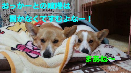 4_20140319120009faa.jpg