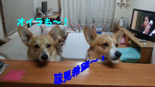 5_20140226104721ef7.jpg