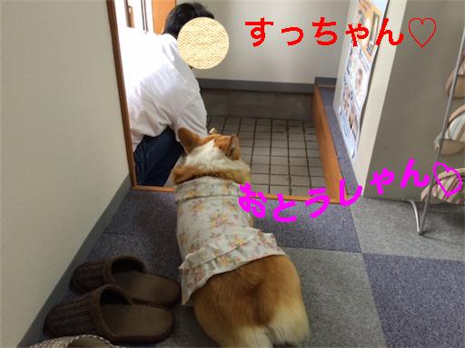 5_2014050911094041b.jpg