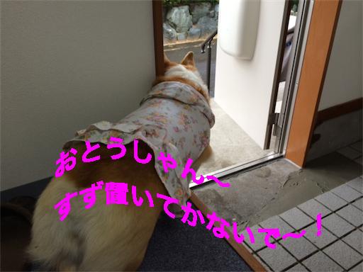7_20140509111122130.jpg