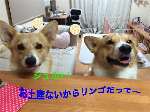 9_20140526143427c23.jpg