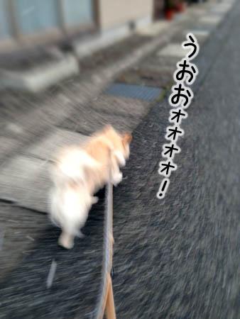 モコ2014.3.6