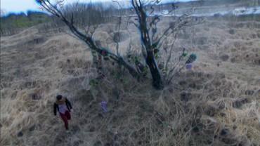 vlcsnap-2014-04-27-11h08m58s32.jpg