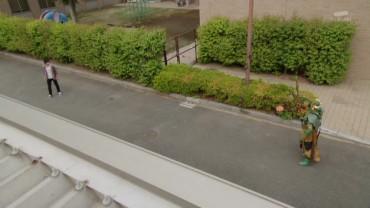 vlcsnap-2014-07-06-11h49m16s177.jpg