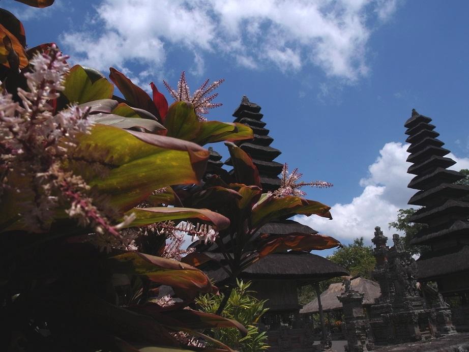 バリ島2014