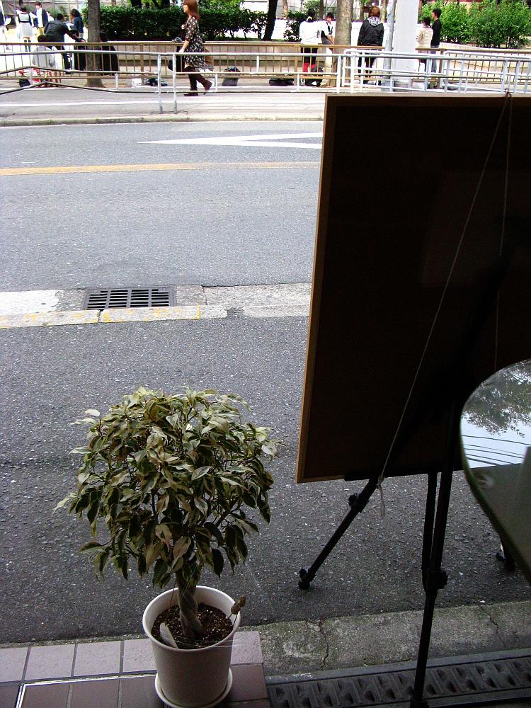 2011_11_02 055