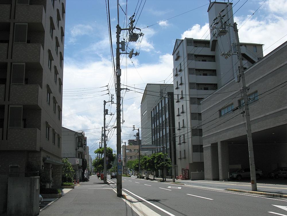 20100808 052