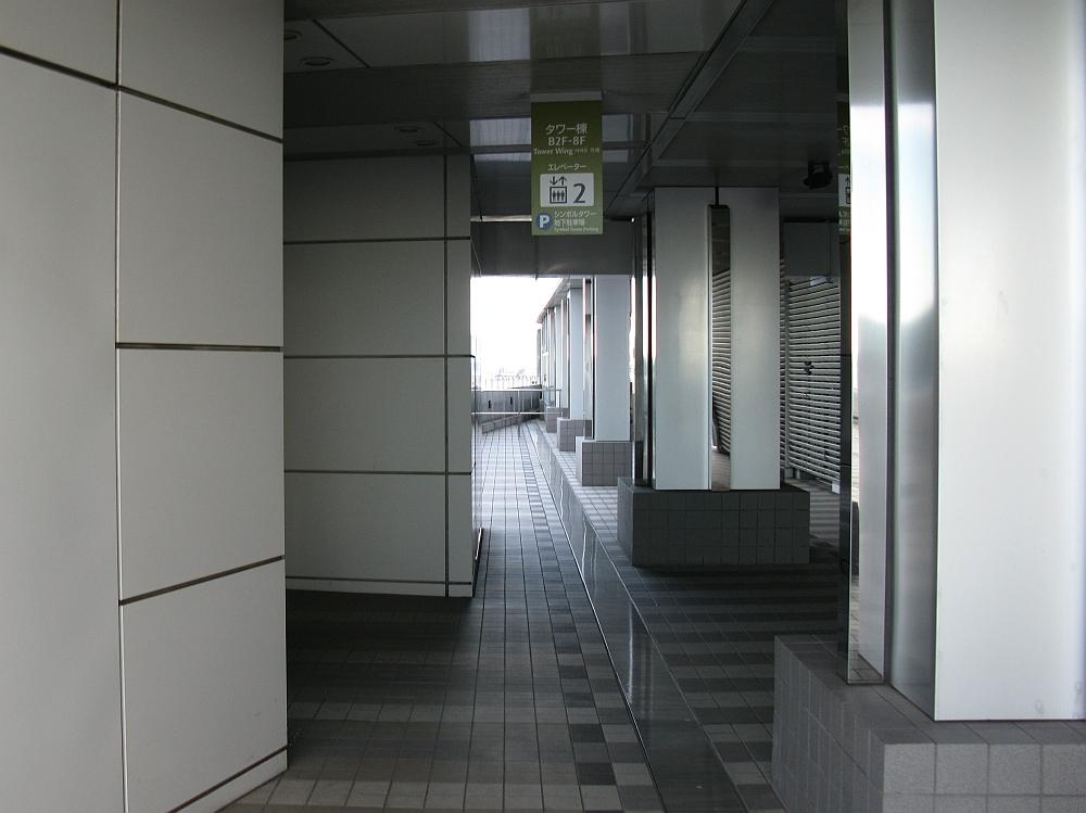 20100808 315