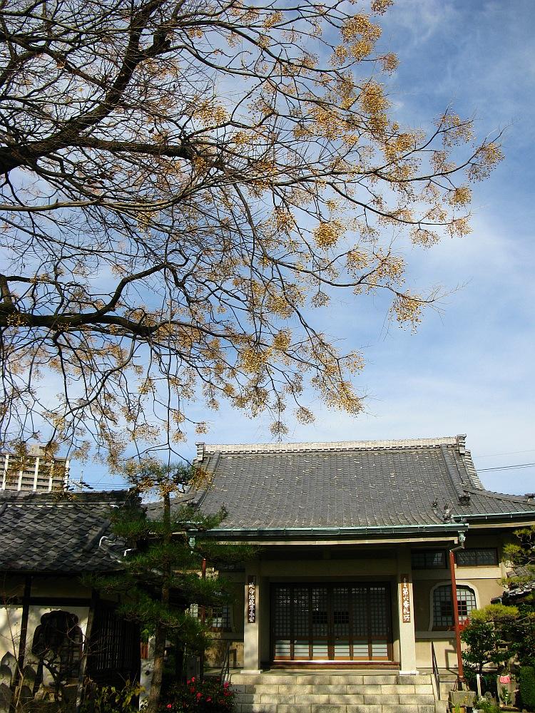 2011_12_28 芳珠寺 (2)