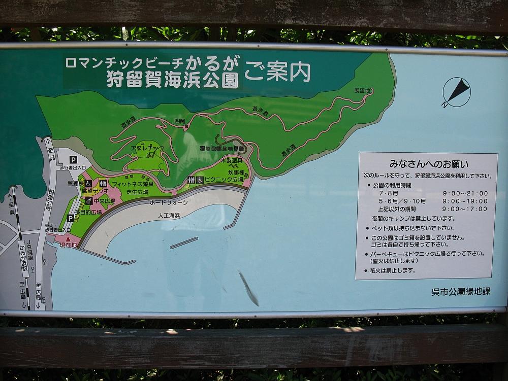 2010_08_13 035