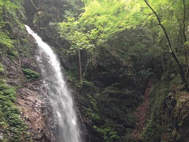 払沢の滝20140813_05