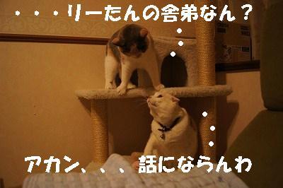 2014051711.jpg