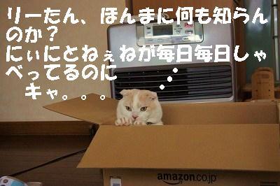 2014051714.jpg