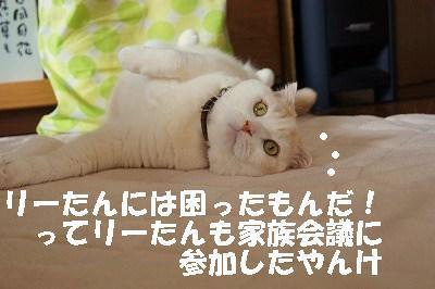 201405172.jpg