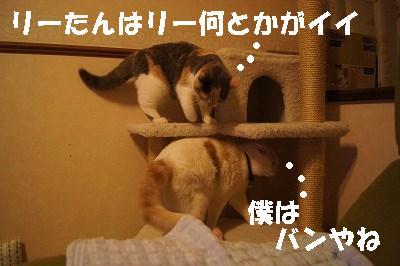 201405175.jpg