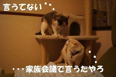 201405177.jpg