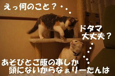 201405178.jpg