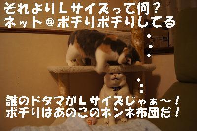 201405179.jpg