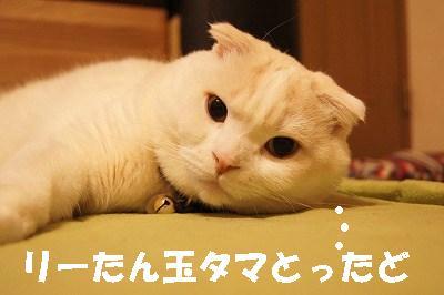 s-201403073.jpg