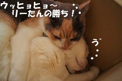 s-2014050410.jpg